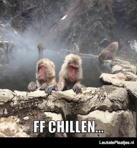 ff chillen