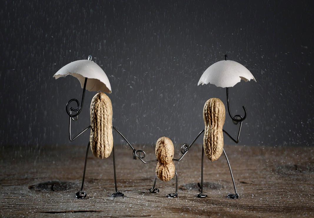 pinda's in de regen