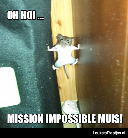 mission-impossible-muis