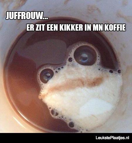 kikker in koffie